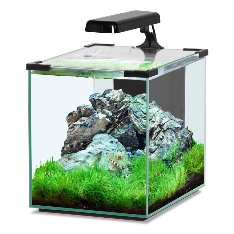Aquarium - botanic 3 130371